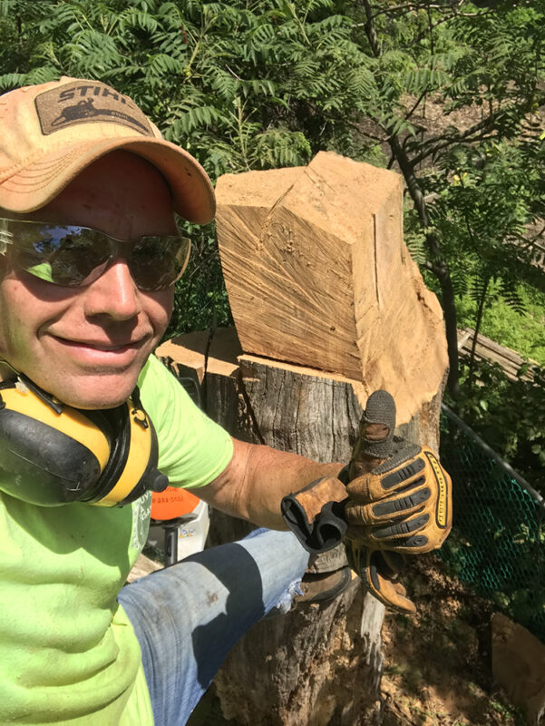 Cutting down Trees with a Chainsaw