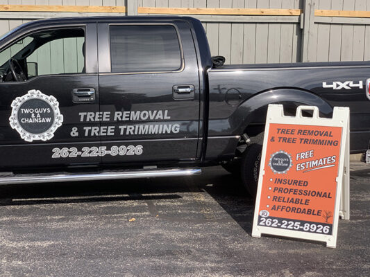 Tree Removal in Pewaukee WI